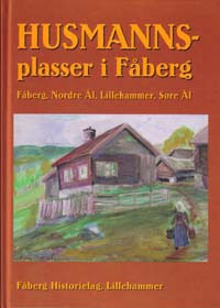 Omslag Husmannsplasser i Fåberg. bind 1